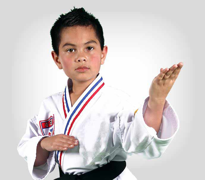 Young boy in martial arts uniform in martial arts pose